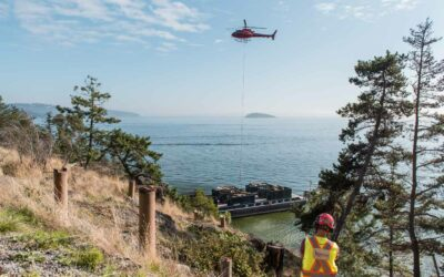 Planning for Foreshore Projects in BC